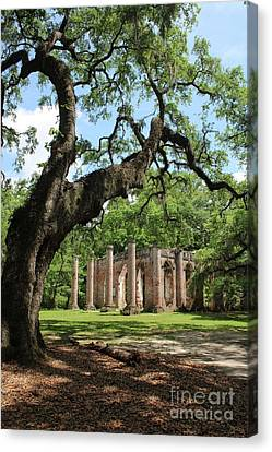 Civil War Site Canvas Print - South Carolina Spiritual by Carol Groenen