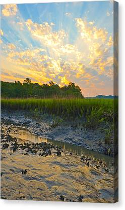 Canvas Print featuring the photograph South Carolina Summer Sunrise by Margaret Palmer