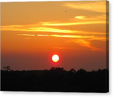Canvas Print - South Carolina Sunset by Shane Brumfield