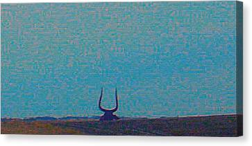Robert Morrissey Canvas Print - South Dakota Bull by Robert Morrissey