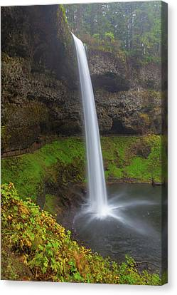 South Falls At Silver Falls State Park Canvas Print by David Gn