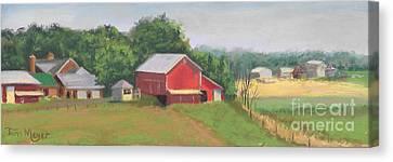 South View Of Meyer Farm Canvas Print by Terri  Meyer