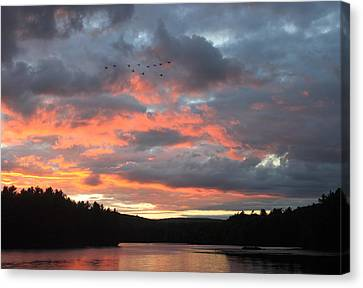 Southbound Geese At Sunset Canvas Print by John Burk