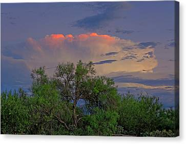 Canvas Print featuring the photograph Southeast Of Sunset H38 by Mark Myhaver