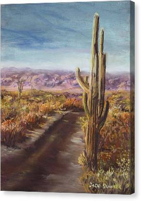 Canvas Print featuring the painting Southern Arizona by Jack Skinner