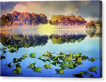 Canvas Print featuring the photograph Southern Beauty by Debra and Dave Vanderlaan