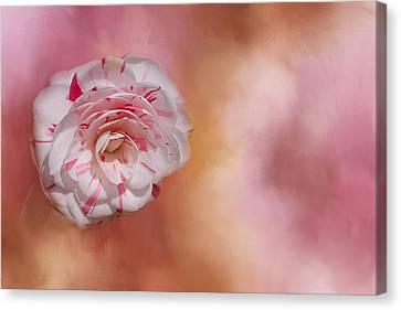 Southern Beauty Canvas Print by Kim Hojnacki