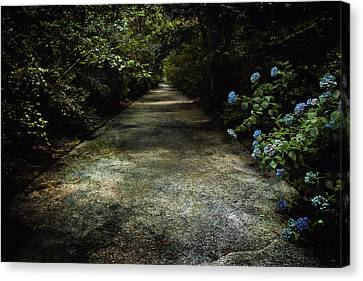 Canvas Print featuring the photograph Southern Blue by Jessica Brawley