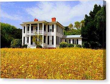 Southern Charm Canvas Print by Karen Wiles