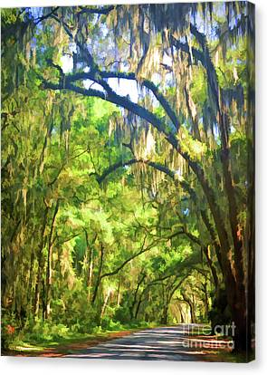 Canvas Print featuring the photograph Southern Drive Through Spanish Moss  by Kerri Farley