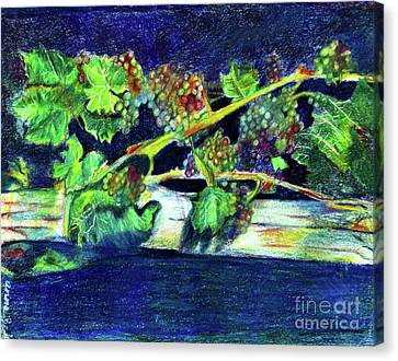 Southern Grapes Canvas Print by Anna Mize Bell