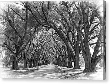 Evergreen Plantation Canvas Print - Southern Journey 2 - Vignette by Steve Harrington
