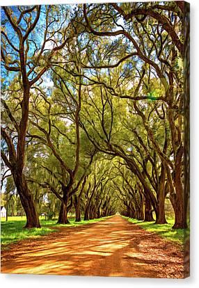 Evergreen Plantation Canvas Print - Southern Lane 4 - Paint by Steve Harrington