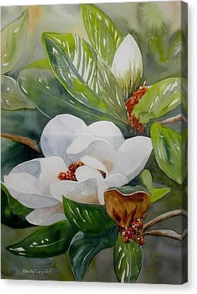 Southern Magnolia Canvas Print
