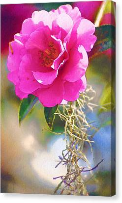Canvas Print featuring the digital art Southern Rose by Donna Bentley