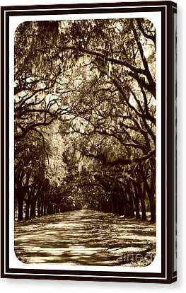 Southern Welcome In Sepia Canvas Print