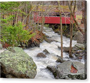 Southford Falls State Park Canvas Print by Bill Wakeley