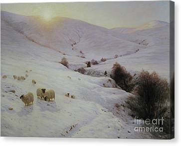 Southland Hills Canvas Print by Celestial Images