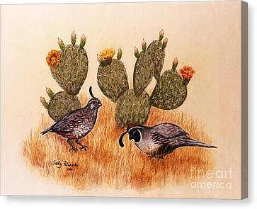 Southwest Art Gambels Quail Canvas Print by Judy Filarecki