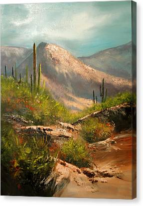 Southwest Beauty Canvas Print by Robert Carver