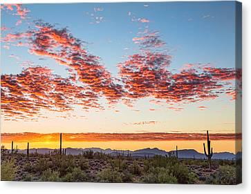 Southwest Desert Colorful Sky Canvas Print by James BO Insogna