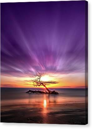 Southwick Tree - Henderson, Ny. Lake Ontario Southwick Beach State Park Sunset Long Exposure Canvas Print by Bradley P Smith
