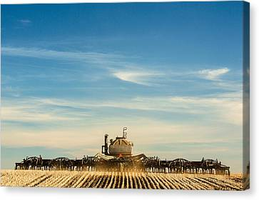 Sowing From Behind Canvas Print