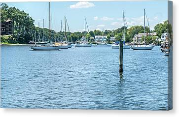 Canvas Print featuring the photograph Spa Creek In Blue by Charles Kraus