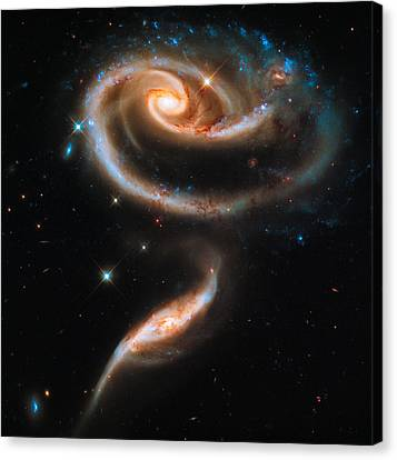 Space Image Galaxy Rose Canvas Print by Matthias Hauser