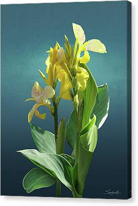 Spade's Yellow Canna Lily Canvas Print by Spadecaller