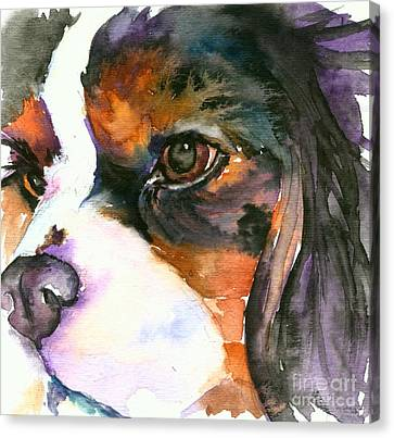 Canvas Print featuring the painting Spaniel by Christy Freeman