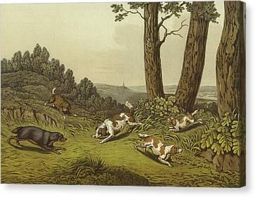 Spaniels Canvas Print by Henry Thomas Alken