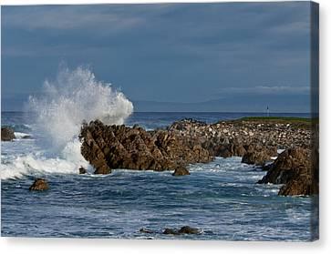Spanish Bay Golf Ocean Wave Canvas Print