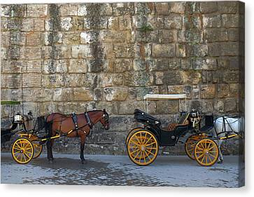 Spanish Carriage Canvas Print by Carlos Caetano