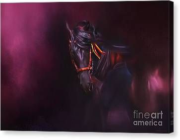 Spanish Passion - Pre Andalusian Stallion Canvas Print by Michelle Wrighton