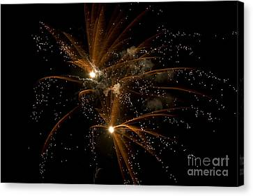 Sparkles Canvas Print by Jeannie Burleson