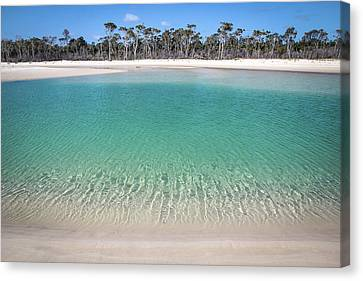 Sparkling Beach Lagoon On Deserted Beach Canvas Print