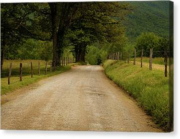 Sparks Lane - Cades Cove Canvas Print by Andrew Soundarajan