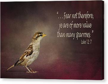 Sparrow - Bible Verse Canvas Print