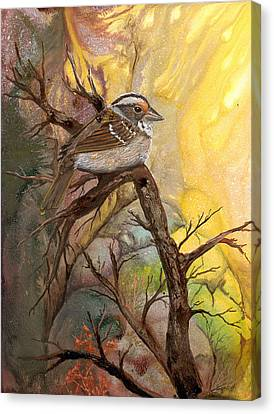 Canvas Print featuring the painting Sparrow by Sherry Shipley