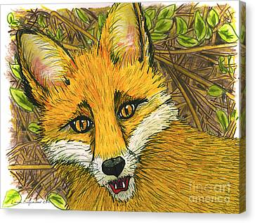 Canvas Print featuring the drawing Speaking Fox by Laura Brightwood