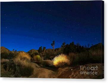 Special Glow Canvas Print