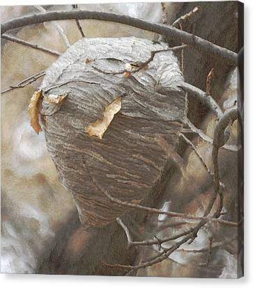Special Home Canvas Print