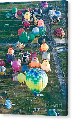 Special Shapes Canvas Print by Jim Chamberlain