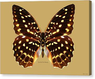 Speckled Hen Butterfly Canvas Print by Walter Colvin
