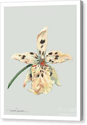 Speckled Orchid Canvas Print by Meridith Martens