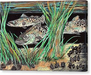 Speckled Trout Canvas Print - Specks In The Grass by Robert Wolverton Jr