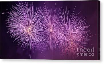 Spectacular Fireworks Show Light Up The Sky. New Year Celebration. Panorama Canvas Print by Michal Bednarek