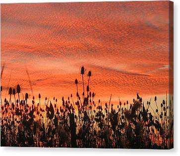 Canvas Print featuring the photograph Spectacular Sky On Fire by Maciek Froncisz