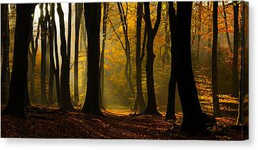 Speulder Panorama Canvas Print by Martin Podt
